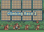 Dk King Of Swing Chinese Gba