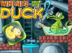 Where Is My Duck